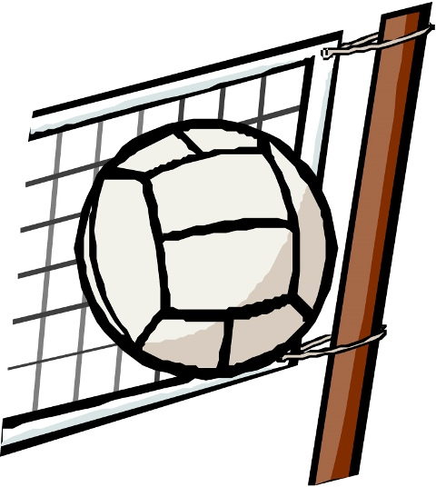volleyball web.jpg